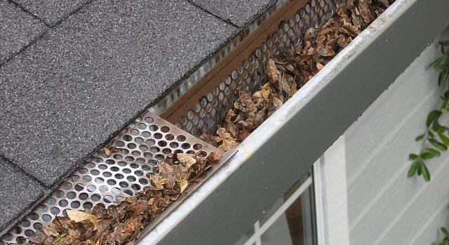 gutter on asphalt roof with leafs inside